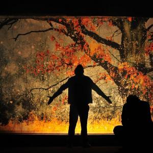 Až opadá listí z dubu